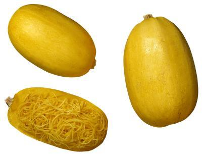 spaghetti squash photo